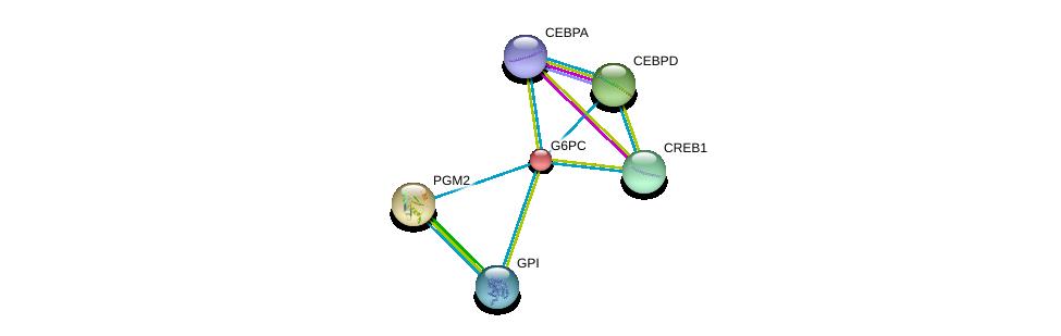 http://string-db.org/version_10/api/image/networkList?limit=0&targetmode=proteins&caller_identity=gene_cards&network_flavor=evidence&identifiers=9606.ENSP00000253801%0d%0a9606.ENSP00000427514%0d%0a9606.ENSP00000405573%0d%0a9606.ENSP00000387699%0d%0a9606.ENSP00000386165%0d%0a9606.ENSP00000371393%0d%0a