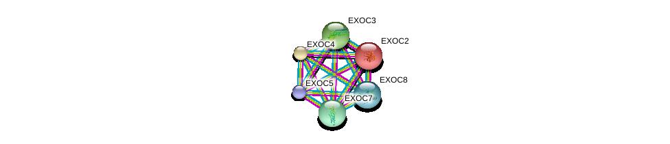 http://string-db.org/version_10/api/image/networkList?limit=0&targetmode=proteins&caller_identity=gene_cards&network_flavor=evidence&identifiers=9606.ENSP00000253861%0d%0a9606.ENSP00000334100%0d%0a9606.ENSP00000230449%0d%0a9606.ENSP00000323377%0d%0a9606.ENSP00000389934%0d%0a9606.ENSP00000353564%0d%0a