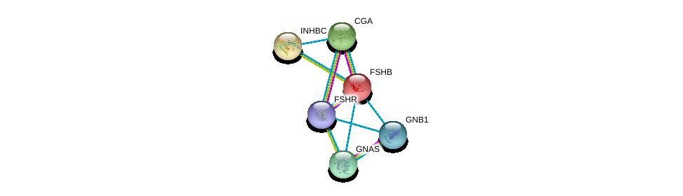http://string-db.org/version_10/api/image/networkList?limit=0&targetmode=proteins&caller_identity=gene_cards&network_flavor=evidence&identifiers=9606.ENSP00000254122%0d%0a9606.ENSP00000358595%0d%0a9606.ENSP00000384708%0d%0a9606.ENSP00000367869%0d%0a9606.ENSP00000360141%0d%0a9606.ENSP00000308716%0d%0a