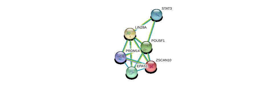 http://string-db.org/version_10/api/image/networkList?limit=0&targetmode=proteins&caller_identity=gene_cards&network_flavor=evidence&identifiers=9606.ENSP00000254231%0d%0a9606.ENSP00000252463%0d%0a9606.ENSP00000259915%0d%0a9606.ENSP00000263734%0d%0a9606.ENSP00000264657%0d%0a9606.ENSP00000276594%0d%0a