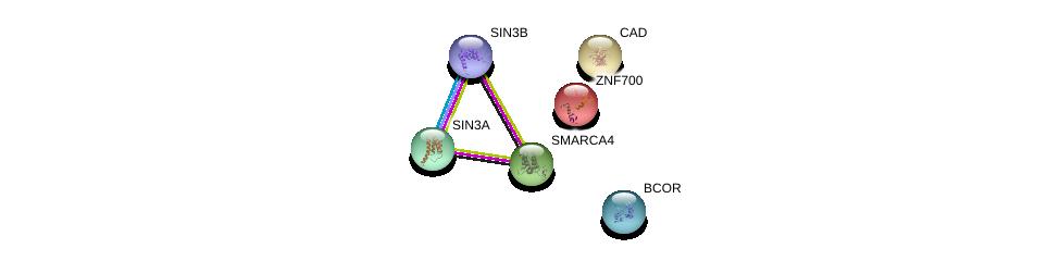 http://string-db.org/version_10/api/image/networkList?limit=0&targetmode=proteins&caller_identity=gene_cards&network_flavor=evidence&identifiers=9606.ENSP00000254321%0d%0a9606.ENSP00000369131%0d%0a9606.ENSP00000353622%0d%0a9606.ENSP00000367705%0d%0a9606.ENSP00000264705%0d%0a9606.ENSP00000350720%0d%0a