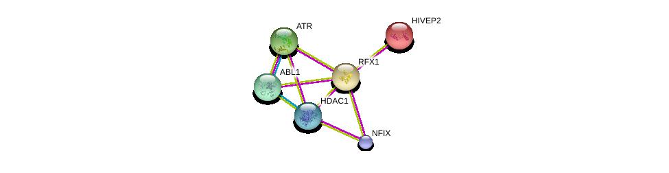 http://string-db.org/version_10/api/image/networkList?limit=0&targetmode=proteins&caller_identity=gene_cards&network_flavor=evidence&identifiers=9606.ENSP00000254325%0d%0a9606.ENSP00000362649%0d%0a9606.ENSP00000343741%0d%0a9606.ENSP00000012134%0d%0a9606.ENSP00000380781%0d%0a9606.ENSP00000361423%0d%0a