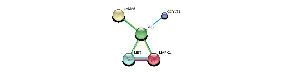 http://string-db.org/version_10/api/image/networkList?limit=0&targetmode=proteins&caller_identity=gene_cards&network_flavor=evidence&identifiers=9606.ENSP00000254351%0d%0a9606.ENSP00000317272%0d%0a9606.ENSP00000252999%0d%0a9606.ENSP00000252999%0d%0a9606.ENSP00000215832%0d%0a9606.ENSP00000381666%0d%0a