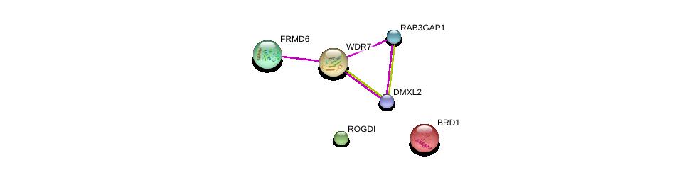 http://string-db.org/version_10/api/image/networkList?limit=0&targetmode=proteins&caller_identity=gene_cards&network_flavor=evidence&identifiers=9606.ENSP00000254442%0d%0a9606.ENSP00000441858%0d%0a9606.ENSP00000322832%0d%0a9606.ENSP00000411418%0d%0a9606.ENSP00000348550%0d%0a9606.ENSP00000216267%0d%0a