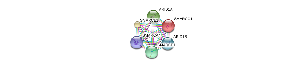 http://string-db.org/version_10/api/image/networkList?limit=0&targetmode=proteins&caller_identity=gene_cards&network_flavor=evidence&identifiers=9606.ENSP00000254480%0d%0a9606.ENSP00000350720%0d%0a9606.ENSP00000344546%0d%0a9606.ENSP00000320485%0d%0a9606.ENSP00000323967%0d%0a9606.ENSP00000263121%0d%0a