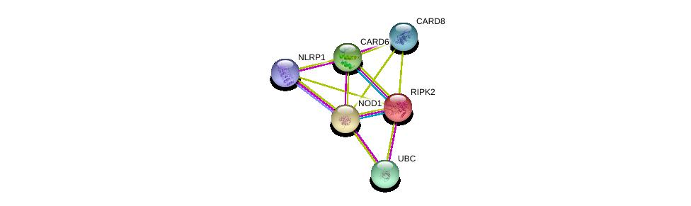 http://string-db.org/version_10/api/image/networkList?limit=0&targetmode=proteins&caller_identity=gene_cards&network_flavor=evidence&identifiers=9606.ENSP00000254691%0d%0a9606.ENSP00000220751%0d%0a9606.ENSP00000460475%0d%0a9606.ENSP00000375767%0d%0a9606.ENSP00000222823%0d%0a9606.ENSP00000344818%0d%0a