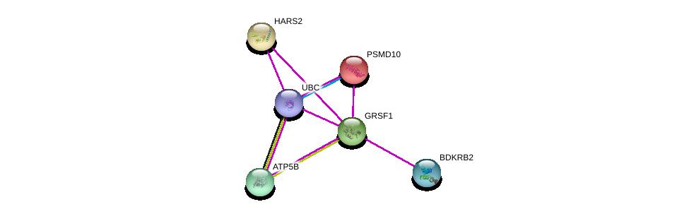 http://string-db.org/version_10/api/image/networkList?limit=0&targetmode=proteins&caller_identity=gene_cards&network_flavor=evidence&identifiers=9606.ENSP00000254799%0d%0a9606.ENSP00000344818%0d%0a9606.ENSP00000307713%0d%0a9606.ENSP00000217958%0d%0a9606.ENSP00000262030%0d%0a9606.ENSP00000230771%0d%0a