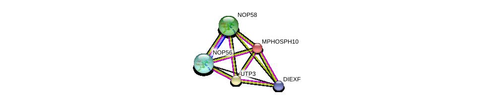 http://string-db.org/version_10/api/image/networkList?limit=0&targetmode=proteins&caller_identity=gene_cards&network_flavor=evidence&identifiers=9606.ENSP00000254803%0d%0a9606.ENSP00000244230%0d%0a9606.ENSP00000419005%0d%0a9606.ENSP00000264279%0d%0a9606.ENSP00000370589%0d%0a9606.ENSP00000370589%0d%0a