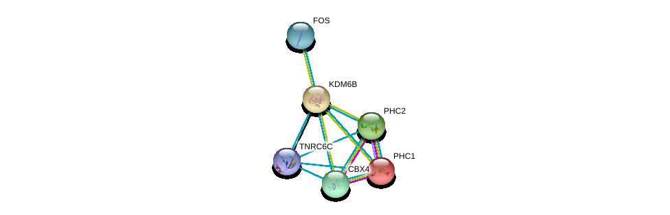 http://string-db.org/version_10/api/image/networkList?limit=0&targetmode=proteins&caller_identity=gene_cards&network_flavor=evidence&identifiers=9606.ENSP00000254846%0d%0a9606.ENSP00000251757%0d%0a9606.ENSP00000257118%0d%0a9606.ENSP00000269397%0d%0a9606.ENSP00000306245%0d%0a9606.ENSP00000336783%0d%0a