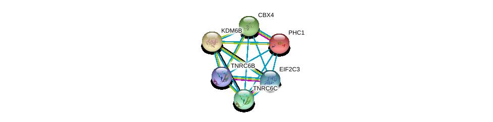 http://string-db.org/version_10/api/image/networkList?limit=0&targetmode=proteins&caller_identity=gene_cards&network_flavor=evidence&identifiers=9606.ENSP00000254846%0d%0a9606.ENSP00000336783%0d%0a9606.ENSP00000362287%0d%0a9606.ENSP00000251757%0d%0a9606.ENSP00000269397%0d%0a9606.ENSP00000401946%0d%0a