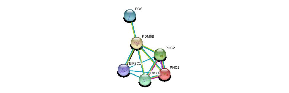 http://string-db.org/version_10/api/image/networkList?limit=0&targetmode=proteins&caller_identity=gene_cards&network_flavor=evidence&identifiers=9606.ENSP00000254846%0d%0a9606.ENSP00000362300%0d%0a9606.ENSP00000257118%0d%0a9606.ENSP00000269397%0d%0a9606.ENSP00000251757%0d%0a9606.ENSP00000306245%0d%0a