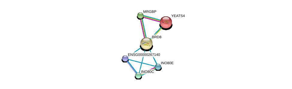 http://string-db.org/version_10/api/image/networkList?limit=0&targetmode=proteins&caller_identity=gene_cards&network_flavor=evidence&identifiers=9606.ENSP00000254900%0d%0a9606.ENSP00000359518%0d%0a9606.ENSP00000247843%0d%0a9606.ENSP00000467041%0d%0a9606.ENSP00000391457%0d%0a9606.ENSP00000457016%0d%0a