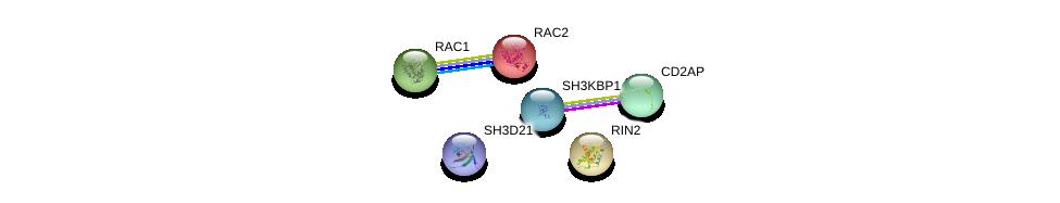 http://string-db.org/version_10/api/image/networkList?limit=0&targetmode=proteins&caller_identity=gene_cards&network_flavor=evidence&identifiers=9606.ENSP00000255006%0d%0a9606.ENSP00000403476%0d%0a9606.ENSP00000380921%0d%0a9606.ENSP00000352264%0d%0a9606.ENSP00000249071%0d%0a9606.ENSP00000348461%0d%0a