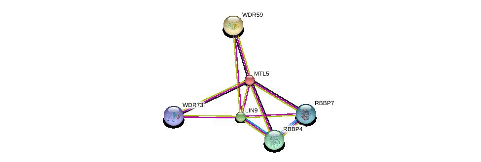 http://string-db.org/version_10/api/image/networkList?limit=0&targetmode=proteins&caller_identity=gene_cards&network_flavor=evidence&identifiers=9606.ENSP00000255087%0d%0a9606.ENSP00000387982%0d%0a9606.ENSP00000362592%0d%0a9606.ENSP00000369424%0d%0a9606.ENSP00000262144%0d%0a9606.ENSP00000329102%0d%0a