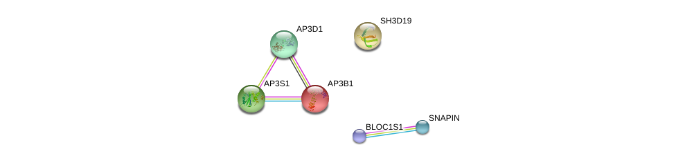 http://string-db.org/version_10/api/image/networkList?limit=0&targetmode=proteins&caller_identity=gene_cards&network_flavor=evidence&identifiers=9606.ENSP00000255194%0d%0a9606.ENSP00000344055%0d%0a9606.ENSP00000325369%0d%0a9606.ENSP00000302913%0d%0a9606.ENSP00000447537%0d%0a9606.ENSP00000357674%0d%0a