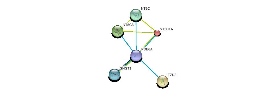 http://string-db.org/version_10/api/image/networkList?limit=0&targetmode=proteins&caller_identity=gene_cards&network_flavor=evidence&identifiers=9606.ENSP00000255266%0d%0a9606.ENSP00000235628%0d%0a9606.ENSP00000240093%0d%0a9606.ENSP00000242210%0d%0a9606.ENSP00000245552%0d%0a9606.ENSP00000248572%0d%0a