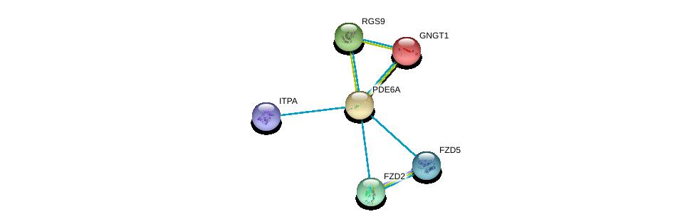 http://string-db.org/version_10/api/image/networkList?limit=0&targetmode=proteins&caller_identity=gene_cards&network_flavor=evidence&identifiers=9606.ENSP00000255266%0d%0a9606.ENSP00000262406%0d%0a9606.ENSP00000248572%0d%0a9606.ENSP00000323901%0d%0a9606.ENSP00000369456%0d%0a9606.ENSP00000354607%0d%0a