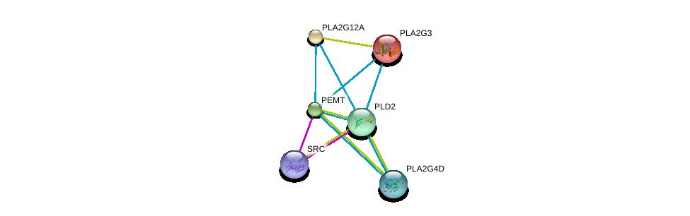 http://string-db.org/version_10/api/image/networkList?limit=0&targetmode=proteins&caller_identity=gene_cards&network_flavor=evidence&identifiers=9606.ENSP00000255389%0d%0a9606.ENSP00000350941%0d%0a9606.ENSP00000215885%0d%0a9606.ENSP00000243501%0d%0a9606.ENSP00000263088%0d%0a9606.ENSP00000290472%0d%0a