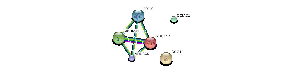 http://string-db.org/version_10/api/image/networkList?limit=0&targetmode=proteins&caller_identity=gene_cards&network_flavor=evidence&identifiers=9606.ENSP00000255390%0d%0a9606.ENSP00000307786%0d%0a9606.ENSP00000233627%0d%0a9606.ENSP00000264312%0d%0a9606.ENSP00000263774%0d%0a9606.ENSP00000339720%0d%0a