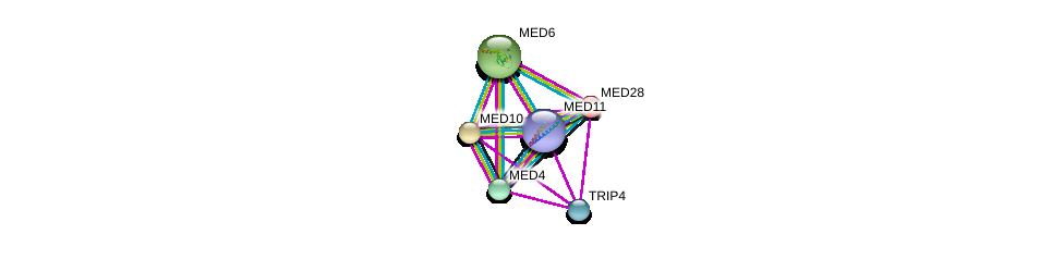 http://string-db.org/version_10/api/image/networkList?limit=0&targetmode=proteins&caller_identity=gene_cards&network_flavor=evidence&identifiers=9606.ENSP00000255764%0d%0a9606.ENSP00000256379%0d%0a9606.ENSP00000258648%0d%0a9606.ENSP00000293777%0d%0a9606.ENSP00000261884%0d%0a9606.ENSP00000237380%0d%0a