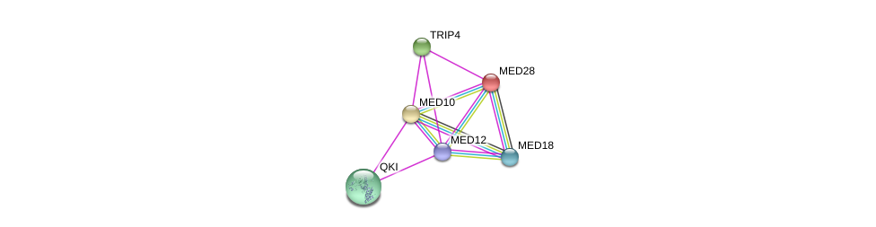 http://string-db.org/version_10/api/image/networkList?limit=0&targetmode=proteins&caller_identity=gene_cards&network_flavor=evidence&identifiers=9606.ENSP00000255764%0d%0a9606.ENSP00000363193%0d%0a9606.ENSP00000355094%0d%0a9606.ENSP00000261884%0d%0a9606.ENSP00000237380%0d%0a9606.ENSP00000362948%0d%0a