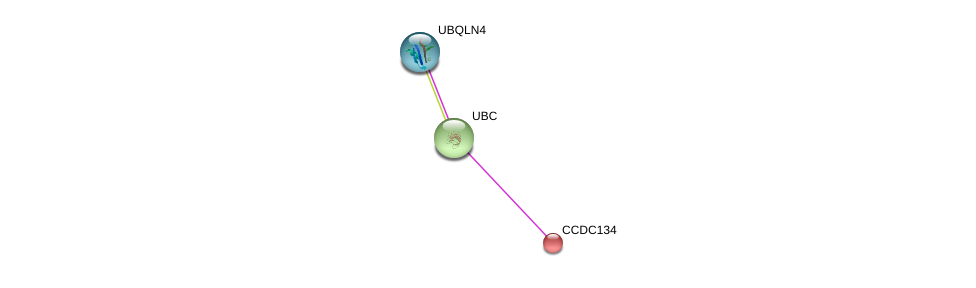 http://string-db.org/version_10/api/image/networkList?limit=0&targetmode=proteins&caller_identity=gene_cards&network_flavor=evidence&identifiers=9606.ENSP00000255784%0d%0a9606.ENSP00000344818%0d%0a9606.ENSP00000357292%0d%0a