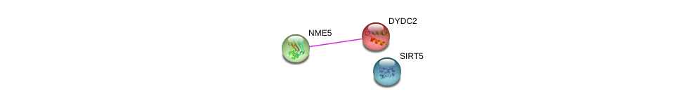 http://string-db.org/version_10/api/image/networkList?limit=0&targetmode=proteins&caller_identity=gene_cards&network_flavor=evidence&identifiers=9606.ENSP00000256039%0d%0a9606.ENSP00000265191%0d%0a9606.ENSP00000368552%0d%0a