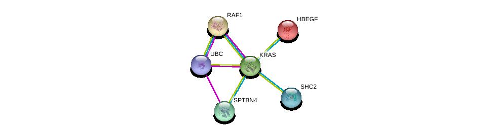 http://string-db.org/version_10/api/image/networkList?limit=0&targetmode=proteins&caller_identity=gene_cards&network_flavor=evidence&identifiers=9606.ENSP00000256078%0d%0a9606.ENSP00000251849%0d%0a9606.ENSP00000344818%0d%0a9606.ENSP00000230990%0d%0a9606.ENSP00000263373%0d%0a9606.ENSP00000264554%0d%0a