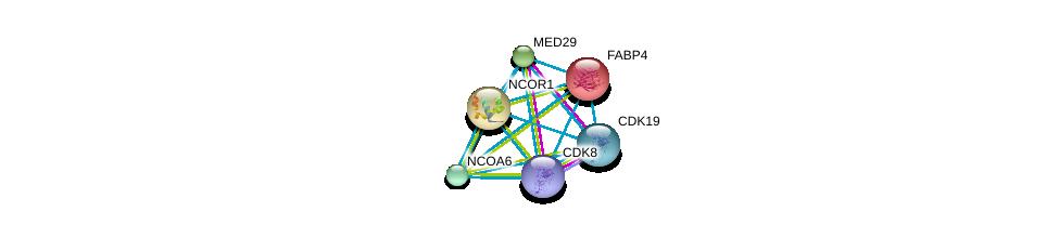 http://string-db.org/version_10/api/image/networkList?limit=0&targetmode=proteins&caller_identity=gene_cards&network_flavor=evidence&identifiers=9606.ENSP00000256104%0d%0a9606.ENSP00000370938%0d%0a9606.ENSP00000268712%0d%0a9606.ENSP00000357907%0d%0a9606.ENSP00000351894%0d%0a9606.ENSP00000314343%0d%0a