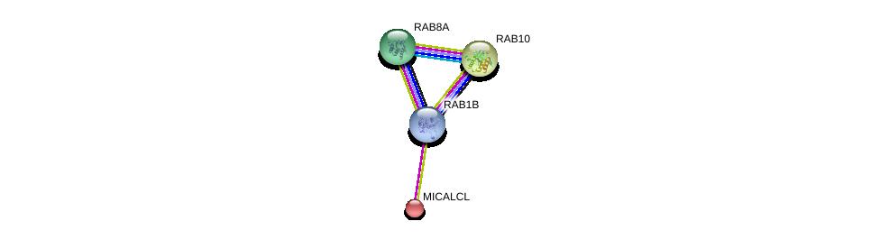 http://string-db.org/version_10/api/image/networkList?limit=0&targetmode=proteins&caller_identity=gene_cards&network_flavor=evidence&identifiers=9606.ENSP00000256186%0d%0a9606.ENSP00000300935%0d%0a9606.ENSP00000264710%0d%0a9606.ENSP00000310226%0d%0a