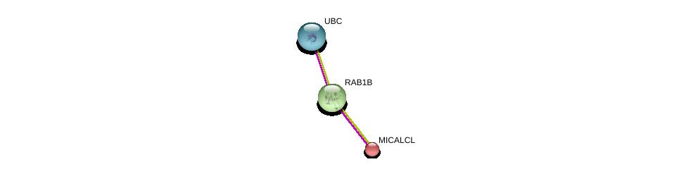 http://string-db.org/version_10/api/image/networkList?limit=0&targetmode=proteins&caller_identity=gene_cards&network_flavor=evidence&identifiers=9606.ENSP00000256186%0d%0a9606.ENSP00000310226%0d%0a9606.ENSP00000344818%0d%0a