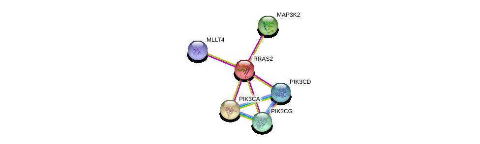 http://string-db.org/version_10/api/image/networkList?limit=0&targetmode=proteins&caller_identity=gene_cards&network_flavor=evidence&identifiers=9606.ENSP00000256196%0d%0a9606.ENSP00000352121%0d%0a9606.ENSP00000366563%0d%0a9606.ENSP00000263967%0d%0a9606.ENSP00000375956%0d%0a9606.ENSP00000343463%0d%0a