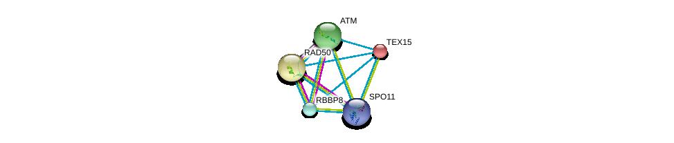 http://string-db.org/version_10/api/image/networkList?limit=0&targetmode=proteins&caller_identity=gene_cards&network_flavor=evidence&identifiers=9606.ENSP00000256246%0d%0a9606.ENSP00000278616%0d%0a9606.ENSP00000360310%0d%0a9606.ENSP00000323050%0d%0a9606.ENSP00000323050%0d%0a9606.ENSP00000265335%0d%0a