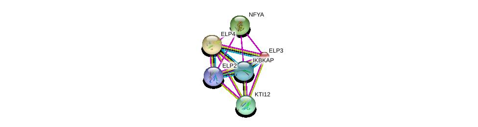 http://string-db.org/version_10/api/image/networkList?limit=0&targetmode=proteins&caller_identity=gene_cards&network_flavor=evidence&identifiers=9606.ENSP00000256398%0d%0a9606.ENSP00000363779%0d%0a9606.ENSP00000414851%0d%0a9606.ENSP00000298937%0d%0a9606.ENSP00000345702%0d%0a9606.ENSP00000360676%0d%0a