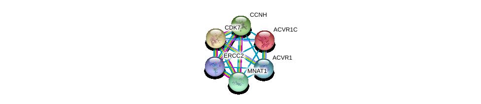 http://string-db.org/version_10/api/image/networkList?limit=0&targetmode=proteins&caller_identity=gene_cards&network_flavor=evidence&identifiers=9606.ENSP00000256443%0d%0a9606.ENSP00000256897%0d%0a9606.ENSP00000261245%0d%0a9606.ENSP00000375809%0d%0a9606.ENSP00000263640%0d%0a9606.ENSP00000243349%0d%0a