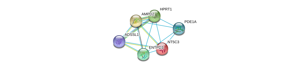 http://string-db.org/version_10/api/image/networkList?limit=0&targetmode=proteins&caller_identity=gene_cards&network_flavor=evidence&identifiers=9606.ENSP00000256578%0d%0a9606.ENSP00000301825%0d%0a9606.ENSP00000331574%0d%0a9606.ENSP00000333019%0d%0a9606.ENSP00000242210%0d%0a9606.ENSP00000298556%0d%0a