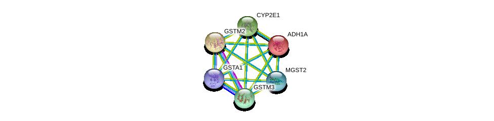 http://string-db.org/version_10/api/image/networkList?limit=0&targetmode=proteins&caller_identity=gene_cards&network_flavor=evidence&identifiers=9606.ENSP00000256594%0d%0a9606.ENSP00000241337%0d%0a9606.ENSP00000252945%0d%0a9606.ENSP00000265498%0d%0a9606.ENSP00000335620%0d%0a9606.ENSP00000209668%0d%0a