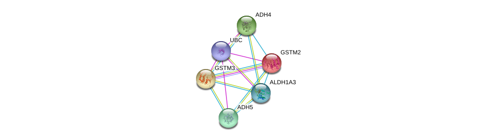 http://string-db.org/version_10/api/image/networkList?limit=0&targetmode=proteins&caller_identity=gene_cards&network_flavor=evidence&identifiers=9606.ENSP00000256594%0d%0a9606.ENSP00000241337%0d%0a9606.ENSP00000344818%0d%0a9606.ENSP00000296412%0d%0a9606.ENSP00000332256%0d%0a9606.ENSP00000265512%0d%0a