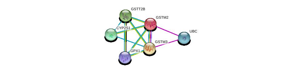 http://string-db.org/version_10/api/image/networkList?limit=0&targetmode=proteins&caller_identity=gene_cards&network_flavor=evidence&identifiers=9606.ENSP00000256594%0d%0a9606.ENSP00000241337%0d%0a9606.ENSP00000344818%0d%0a9606.ENSP00000407375%0d%0a9606.ENSP00000308032%0d%0a9606.ENSP00000290765%0d%0a