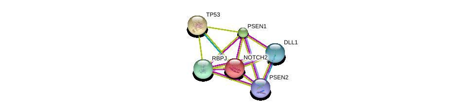 http://string-db.org/version_10/api/image/networkList?limit=0&targetmode=proteins&caller_identity=gene_cards&network_flavor=evidence&identifiers=9606.ENSP00000256646%0d%0a9606.ENSP00000269305%0d%0a9606.ENSP00000355718%0d%0a9606.ENSP00000345206%0d%0a9606.ENSP00000355747%0d%0a9606.ENSP00000326366%0d%0a