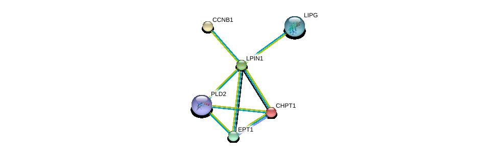 http://string-db.org/version_10/api/image/networkList?limit=0&targetmode=proteins&caller_identity=gene_cards&network_flavor=evidence&identifiers=9606.ENSP00000256720%0d%0a9606.ENSP00000229266%0d%0a9606.ENSP00000256442%0d%0a9606.ENSP00000260585%0d%0a9606.ENSP00000261292%0d%0a9606.ENSP00000263088%0d%0a