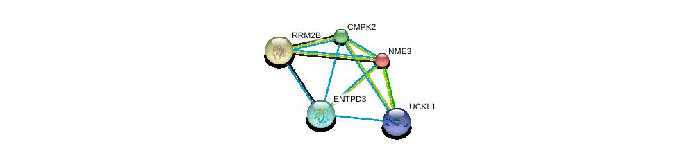 http://string-db.org/version_10/api/image/networkList?limit=0&targetmode=proteins&caller_identity=gene_cards&network_flavor=evidence&identifiers=9606.ENSP00000256722%0d%0a9606.ENSP00000301825%0d%0a9606.ENSP00000346155%0d%0a9606.ENSP00000346155%0d%0a9606.ENSP00000219302%0d%0a9606.ENSP00000251810%0d%0a
