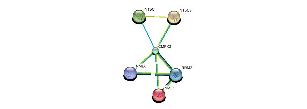 http://string-db.org/version_10/api/image/networkList?limit=0&targetmode=proteins&caller_identity=gene_cards&network_flavor=evidence&identifiers=9606.ENSP00000256722%0d%0a9606.ENSP00000416658%0d%0a9606.ENSP00000242210%0d%0a9606.ENSP00000013034%0d%0a9606.ENSP00000353770%0d%0a9606.ENSP00000245552%0d%0a