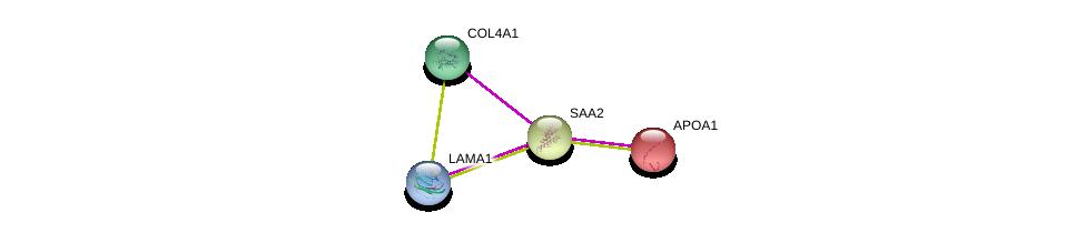 http://string-db.org/version_10/api/image/networkList?limit=0&targetmode=proteins&caller_identity=gene_cards&network_flavor=evidence&identifiers=9606.ENSP00000256733%0d%0a9606.ENSP00000364979%0d%0a9606.ENSP00000374309%0d%0a9606.ENSP00000236850%0d%0a
