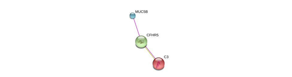 http://string-db.org/version_10/api/image/networkList?limit=0&targetmode=proteins&caller_identity=gene_cards&network_flavor=evidence&identifiers=9606.ENSP00000256785%0d%0a9606.ENSP00000245907%0d%0a9606.ENSP00000436812%0d%0a