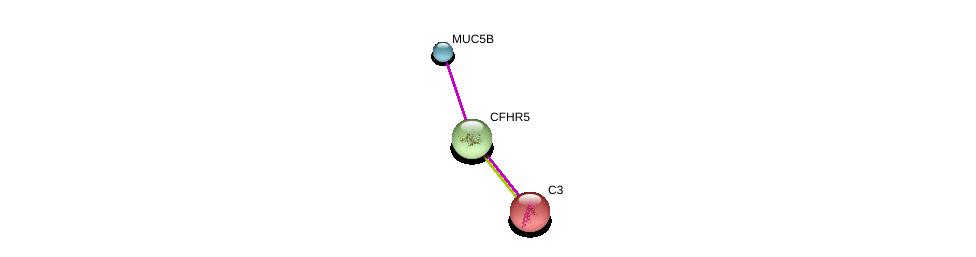 http://string-db.org/version_10/api/image/networkList?limit=0&targetmode=proteins&caller_identity=gene_cards&network_flavor=evidence&identifiers=9606.ENSP00000256785%0d%0a9606.ENSP00000436812%0d%0a9606.ENSP00000245907%0d%0a