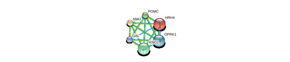 http://string-db.org/version_10/api/image/networkList?limit=0&targetmode=proteins&caller_identity=gene_cards&network_flavor=evidence&identifiers=9606.ENSP00000256906%0d%0a9606.ENSP00000264218%0d%0a9606.ENSP00000264708%0d%0a9606.ENSP00000265023%0d%0a9606.ENSP00000265572%0d%0a9606.ENSP00000265643%0d%0a