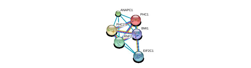 http://string-db.org/version_10/api/image/networkList?limit=0&targetmode=proteins&caller_identity=gene_cards&network_flavor=evidence&identifiers=9606.ENSP00000257118%0d%0a9606.ENSP00000356480%0d%0a9606.ENSP00000365851%0d%0a9606.ENSP00000251757%0d%0a9606.ENSP00000339109%0d%0a9606.ENSP00000362300%0d%0a