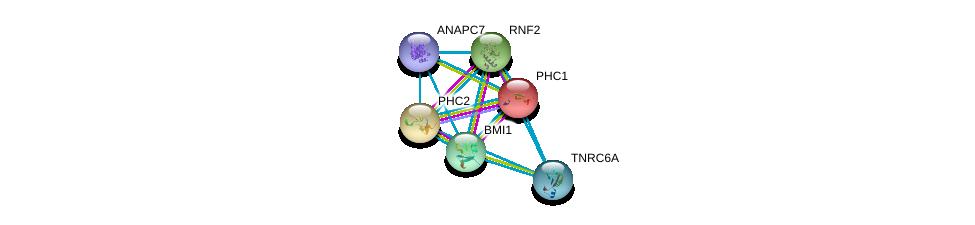 http://string-db.org/version_10/api/image/networkList?limit=0&targetmode=proteins&caller_identity=gene_cards&network_flavor=evidence&identifiers=9606.ENSP00000257118%0d%0a9606.ENSP00000356480%0d%0a9606.ENSP00000365851%0d%0a9606.ENSP00000251757%0d%0a9606.ENSP00000394394%0d%0a9606.ENSP00000379144%0d%0a