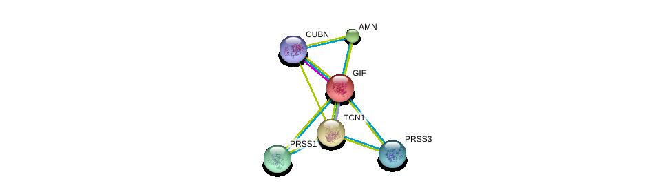 http://string-db.org/version_10/api/image/networkList?limit=0&targetmode=proteins&caller_identity=gene_cards&network_flavor=evidence&identifiers=9606.ENSP00000257248%0d%0a9606.ENSP00000367064%0d%0a9606.ENSP00000257264%0d%0a9606.ENSP00000299155%0d%0a9606.ENSP00000308720%0d%0a9606.ENSP00000354280%0d%0a